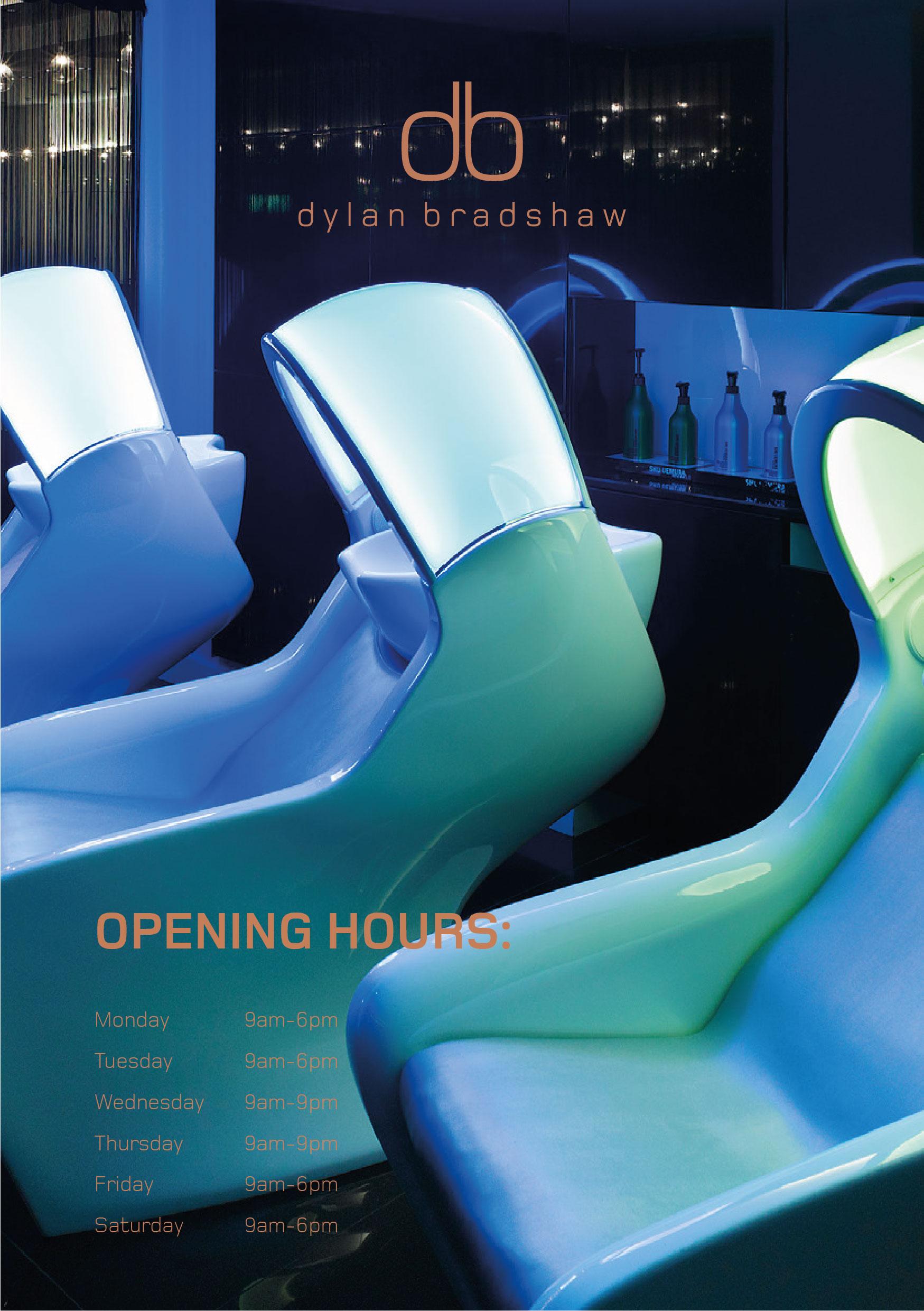 DB Brochure-03