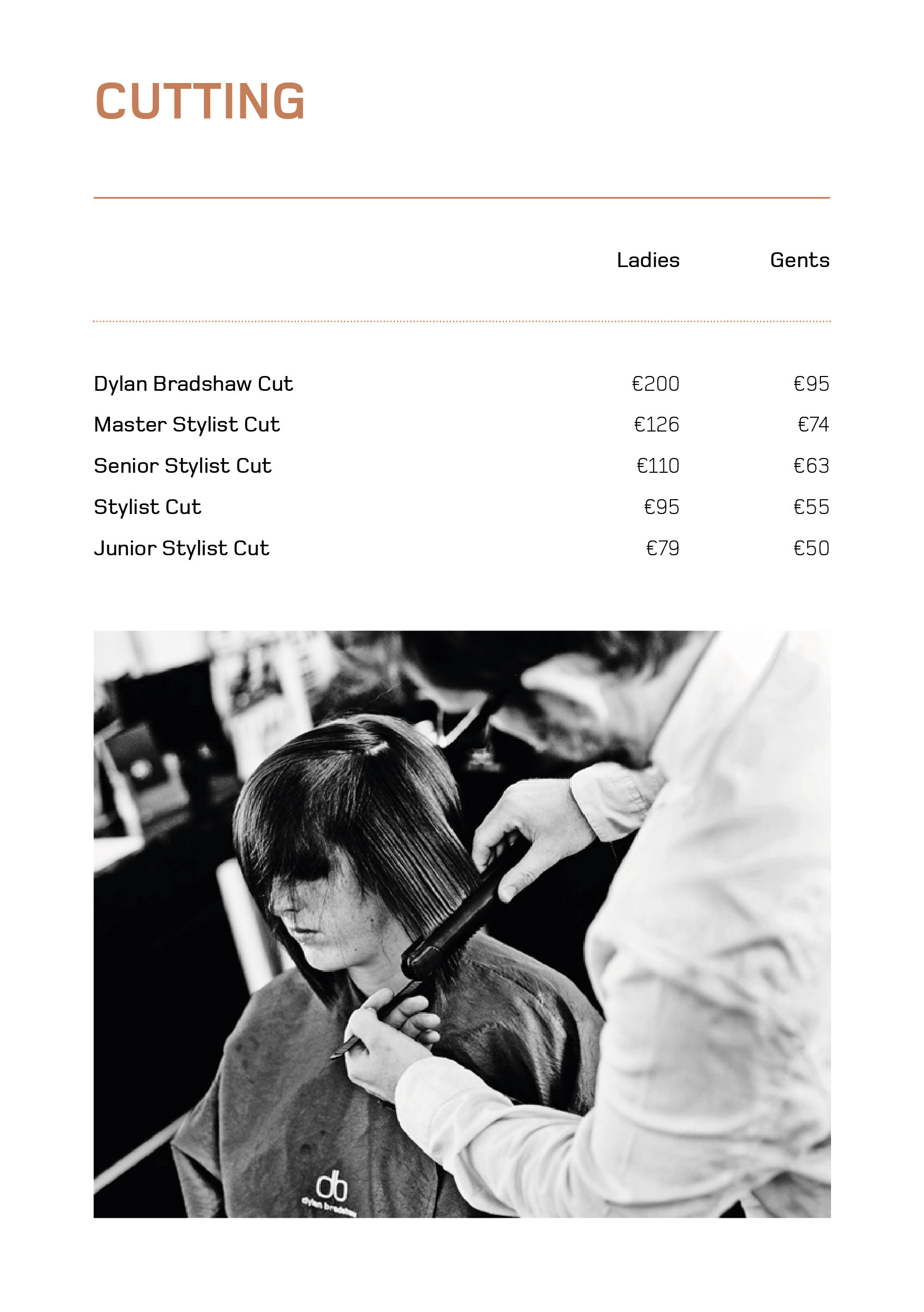 DB Brochure-04